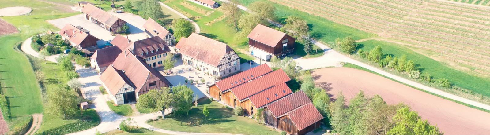 Weingut Steinbachhof - Eißler